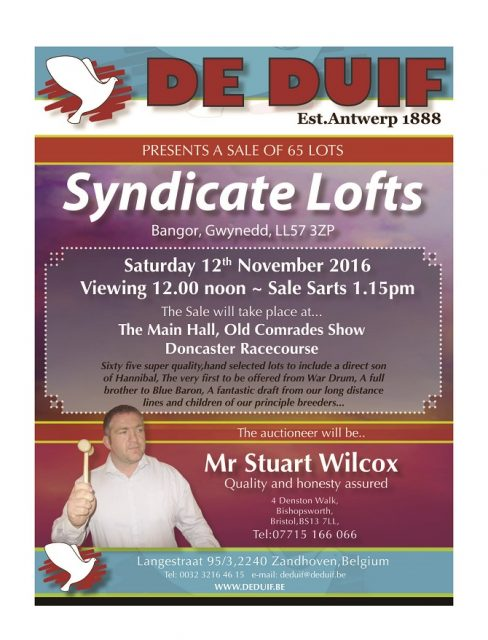 stuart-wilcox-syndicate-lofts_page_01