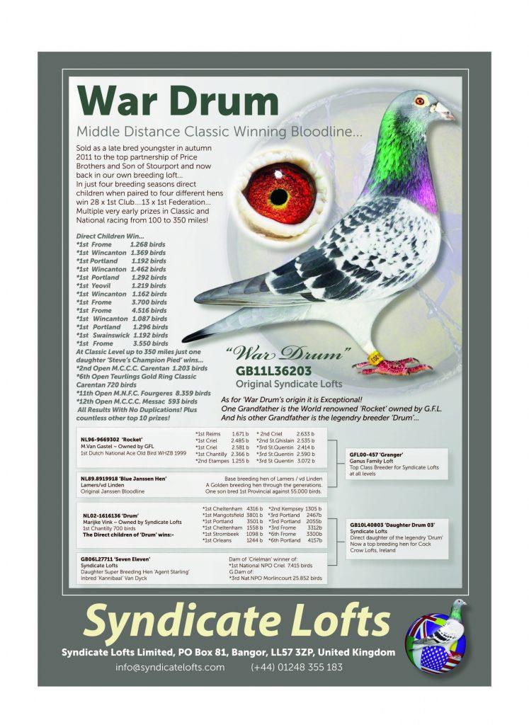stuart-wilcox-syndicate-lofts_page_4
