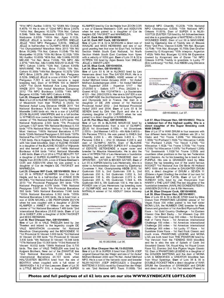 stuart-wilcox-syndicate-lofts_page_6