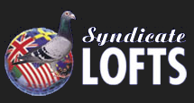 Syndicate Lofts Logo