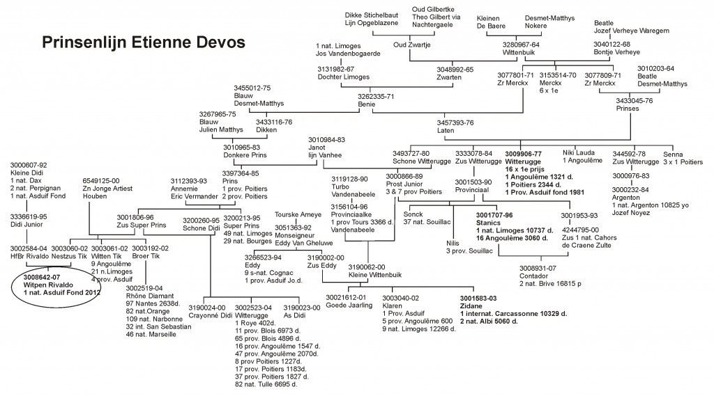 Etienne Devos, Deerlijk …Part 1, by Michel Bommerez – Syndicate Lofts