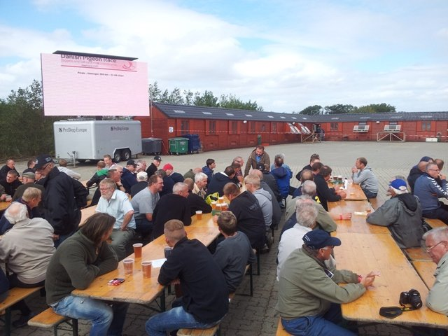 Photograph of the finals day of the Danish race in Denmark. There were a few hundred people and there were lots to eat, you could sit inside or out and there was a large screen which projected the pigeons with ring number and owner. Pleasant, exciting and a real experience.