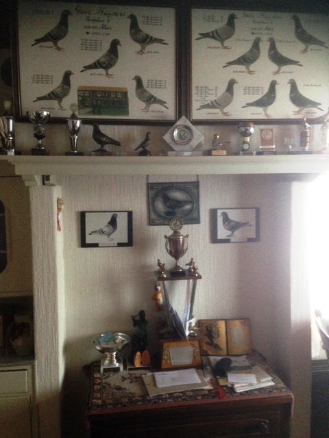 One wall in the brothers kitchen dedicated to a truly legendary team of pigeons at the real long distance...