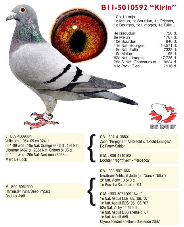 Thone-Jos-11-5010592-Kirin