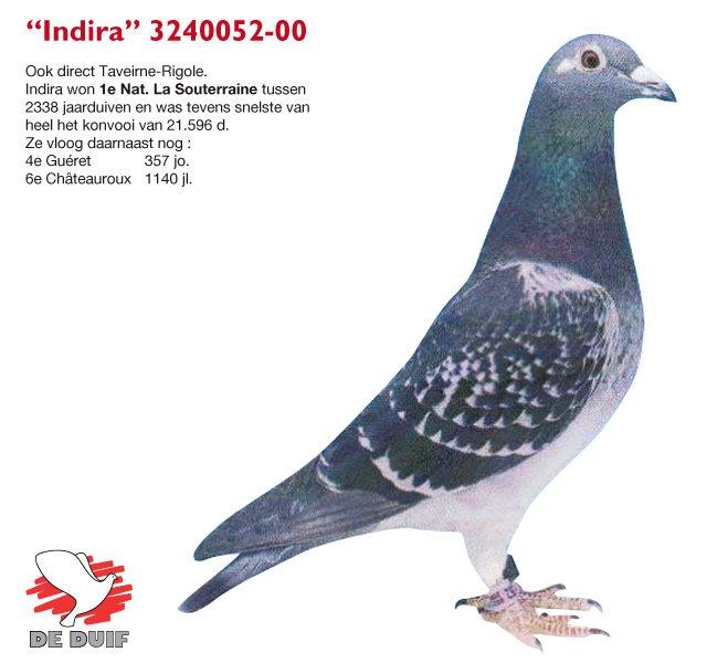 Sioen-Luc-Hilde_B00-3240052_Indira