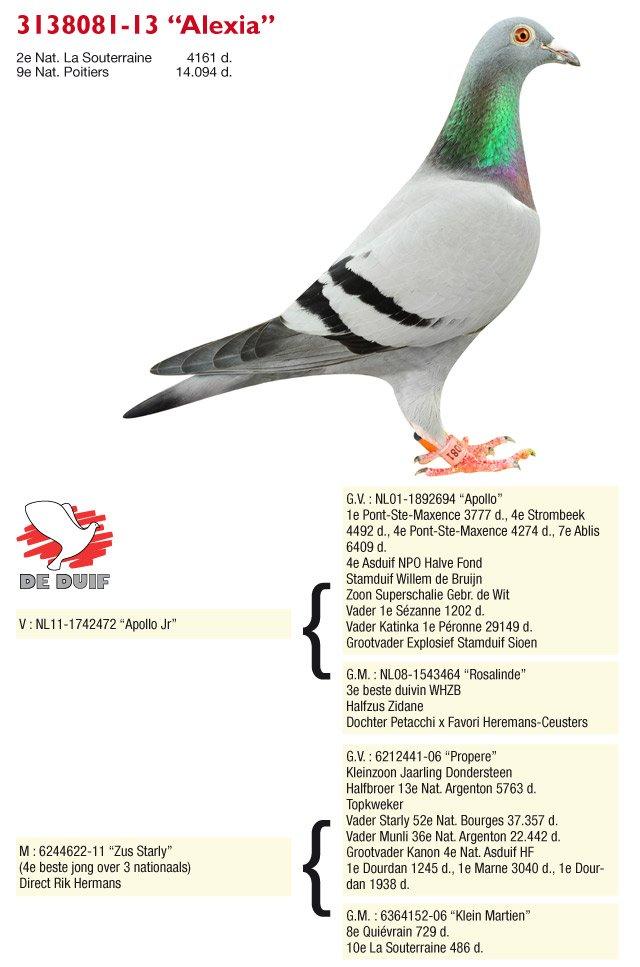 Sioen-Luc-Hilde_B13-3138081-Alexia